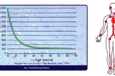 Membaca Grafik Pertumbuhan yang Tepat